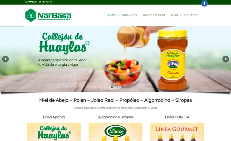 diseno-pagina-web-narbasa